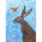The Hare and the Butterfly Print