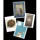 4 Mixed Hare cards
