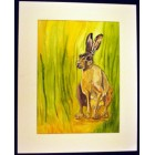 Hare in Clearing Original Painting & Mount