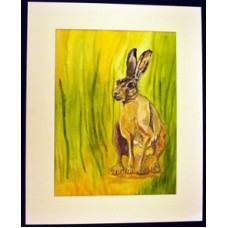 Hare in Clearing Print 1 & Mount