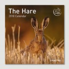 The Hare 2018 Mini Calendar