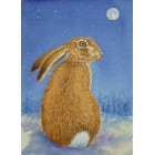 Winter Hare Print