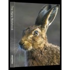 The Hare hard-backed Notebook inc. p&p