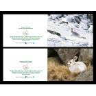6 Hare 'Christmas' cards - 3 of each design - landscape