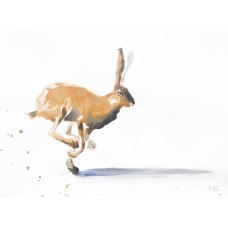 The Sprinting Hare