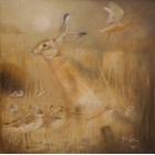 Hare and Godwits. Print + Mount
