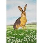 Hare on Hill - Original